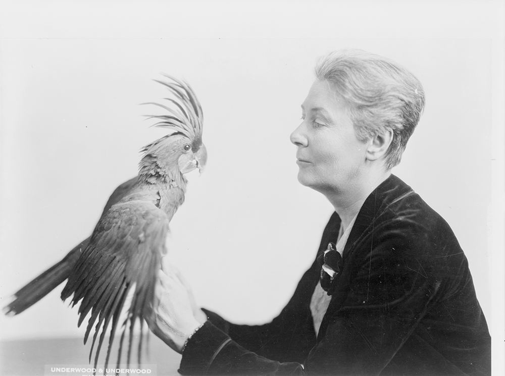 """Winsome Washington Woman Has Rare Parrot for Pet,"" 1928. Photograph by Underwood & Underwood. Library of Congress, Prints and Photographs Division."