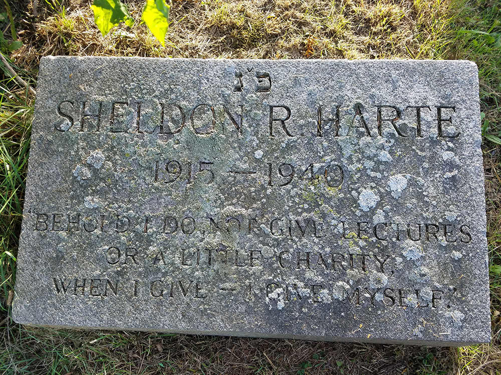 Photograph of Sheldon Harte's gravestone in Beth Olam Cemetery, Queens, New York, by Julia Harte.