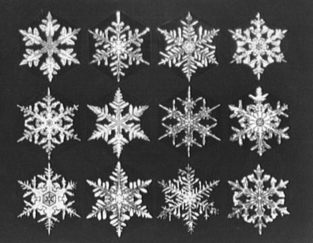 Snowflakes, three rows of four, by Theodor Horydczak, c. 1920. Library of Congress, Prints and Photographs Division.