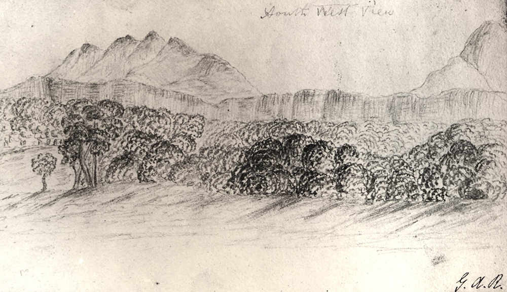Forest scene with mountain range behind, by George Augustus Robinson, c. 1839. British Museum.