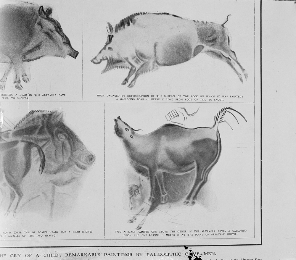 Reproductions of cave paintings in the Altamira Cave, Spain, from the Illustrated London News, August 17, 1912. Library of Congress, Prints and Photographs Division.