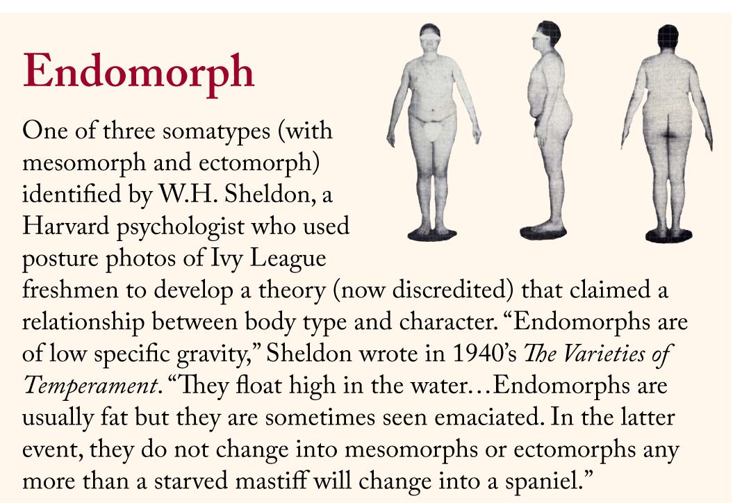 The characteristics of an endomorph.
