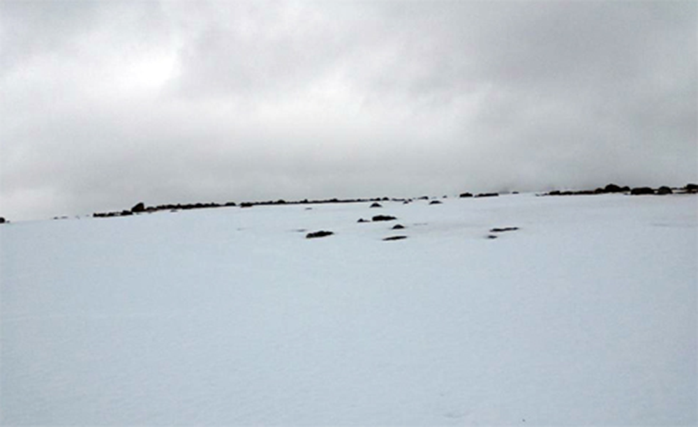 Gravnessett, an arctic cemetery strewn with half-buried remains. Photograph by Colin Dickey.