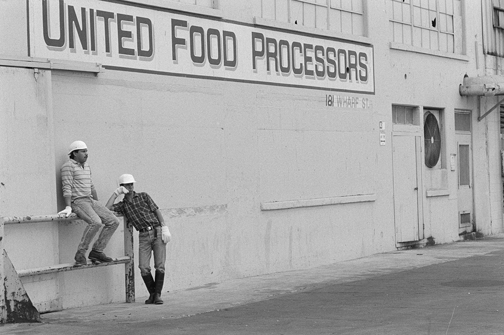 Fish cannery, San Pedro, California, 1989. Photograph by Ken Light.