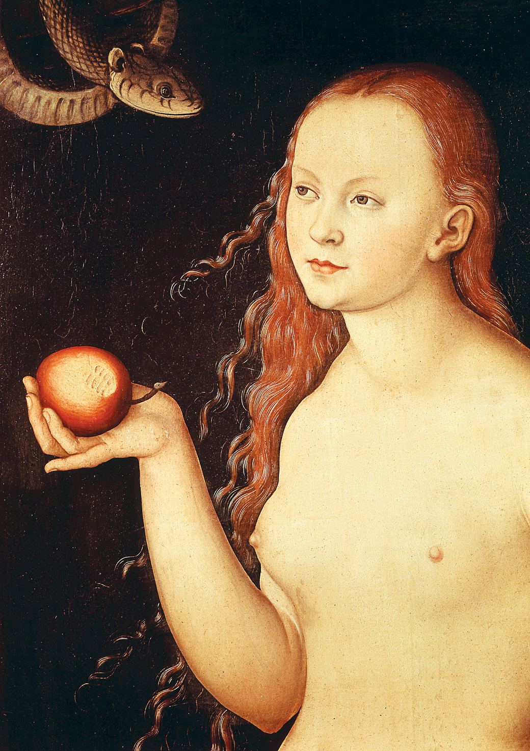 Adam and Eve (detail), by Lucas Cranach the Elder, 1528. Uffizi Gallery, Florence, Italy.
