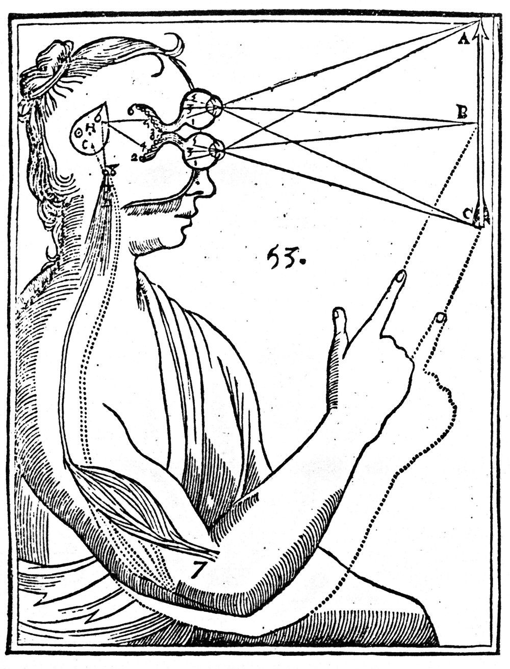 How perceptions and humors travel through the body, woodcut from René Descartes' Treatise of Man, 1664.