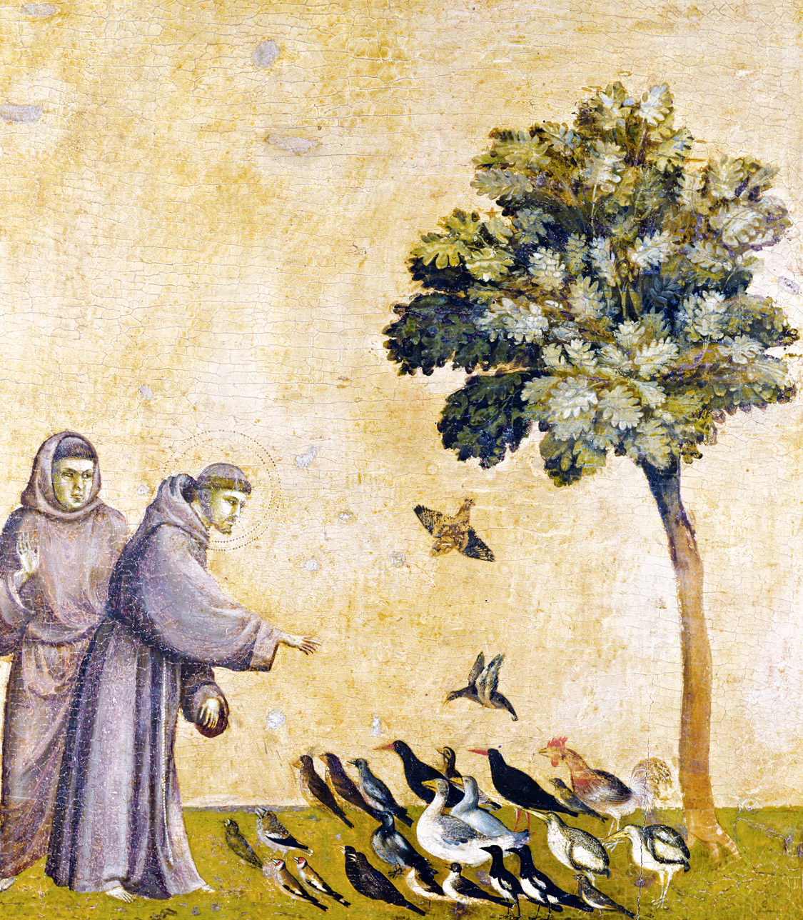 St. Francis preaching to the birds, from St. Francis Receiving the Stigmata, by Giotto di Bondone, c. 1295–1300. Louvre Museum, Paris, France.