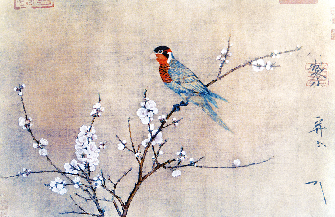 Five-Colored Parakeet on a Blossoming Apricot Tree, by Emperor Huizong, c. 1115. Museum of Fine Arts, Boston, Maria Antoinette Evans Fund.
