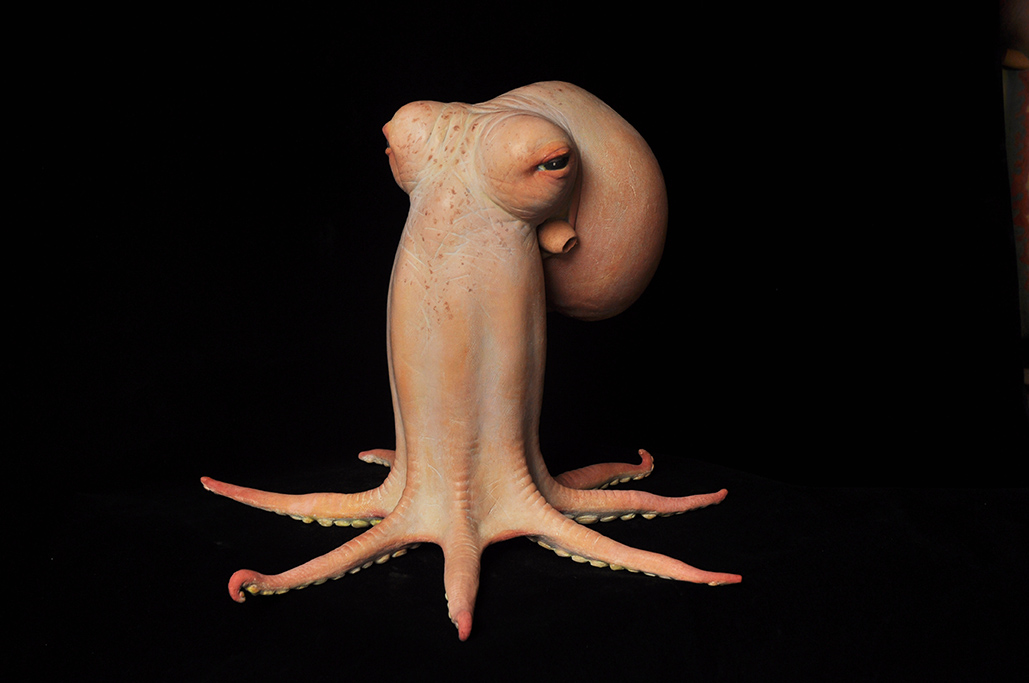 Octopus 1 (Codger), by Judy Fox, 2009-2011.