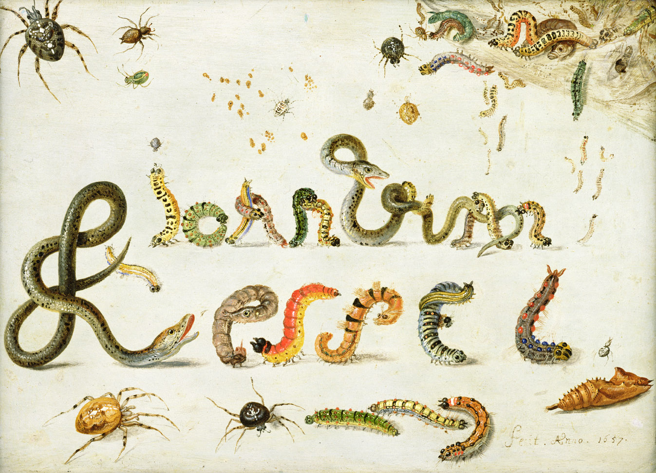 Spiders, snakes, and caterpillars spelling the artist's name, by Jan van Kessel the Elder, 1657.
