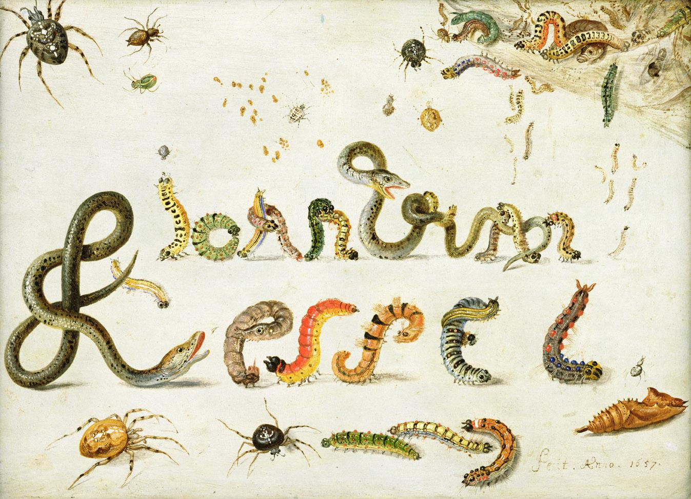 Spiders, snakes, and caterpillars spelling the artist's name, by Jan van Kessel the Elder, 1657.