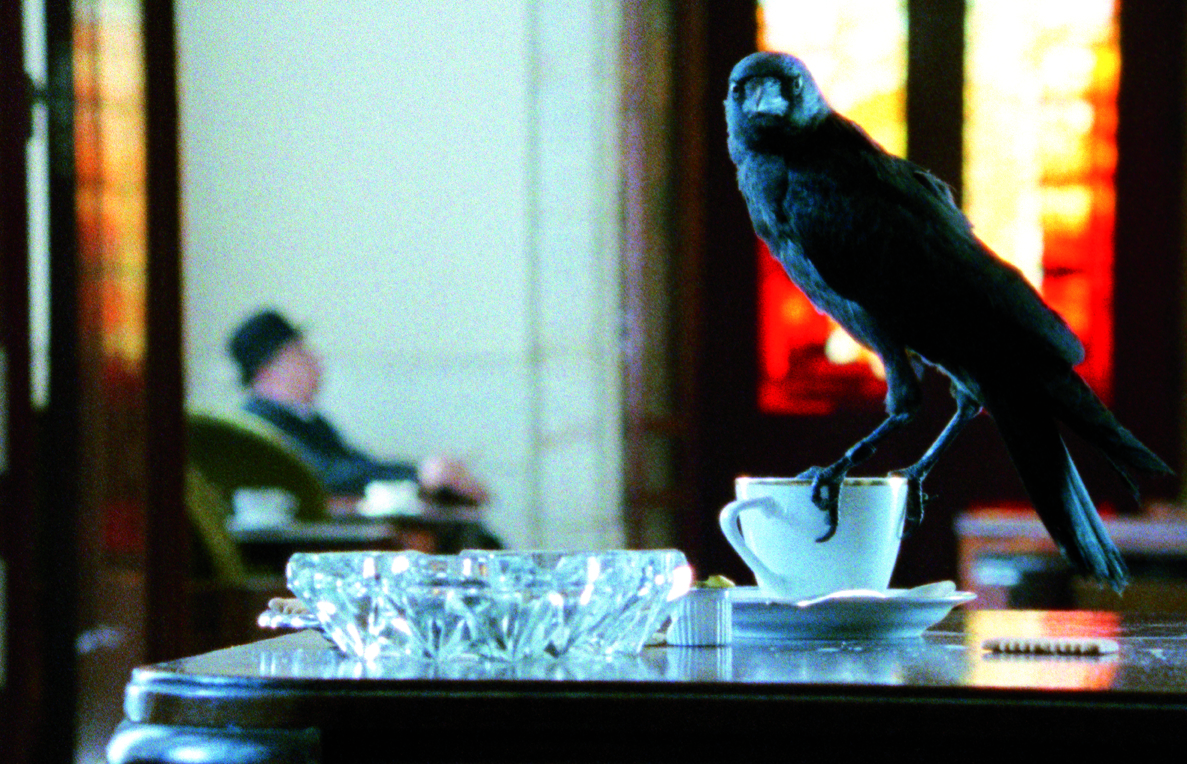 Film still from Looking for Alfred, directed by Johan Grimonprez, 2005
