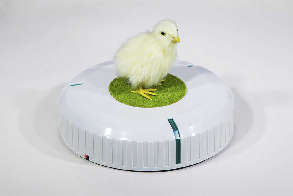 Rumba I: Incubator (for Parkett 99), by Cao Fei, 2017. Mini vacuum-cleaning robot and artificial chick.