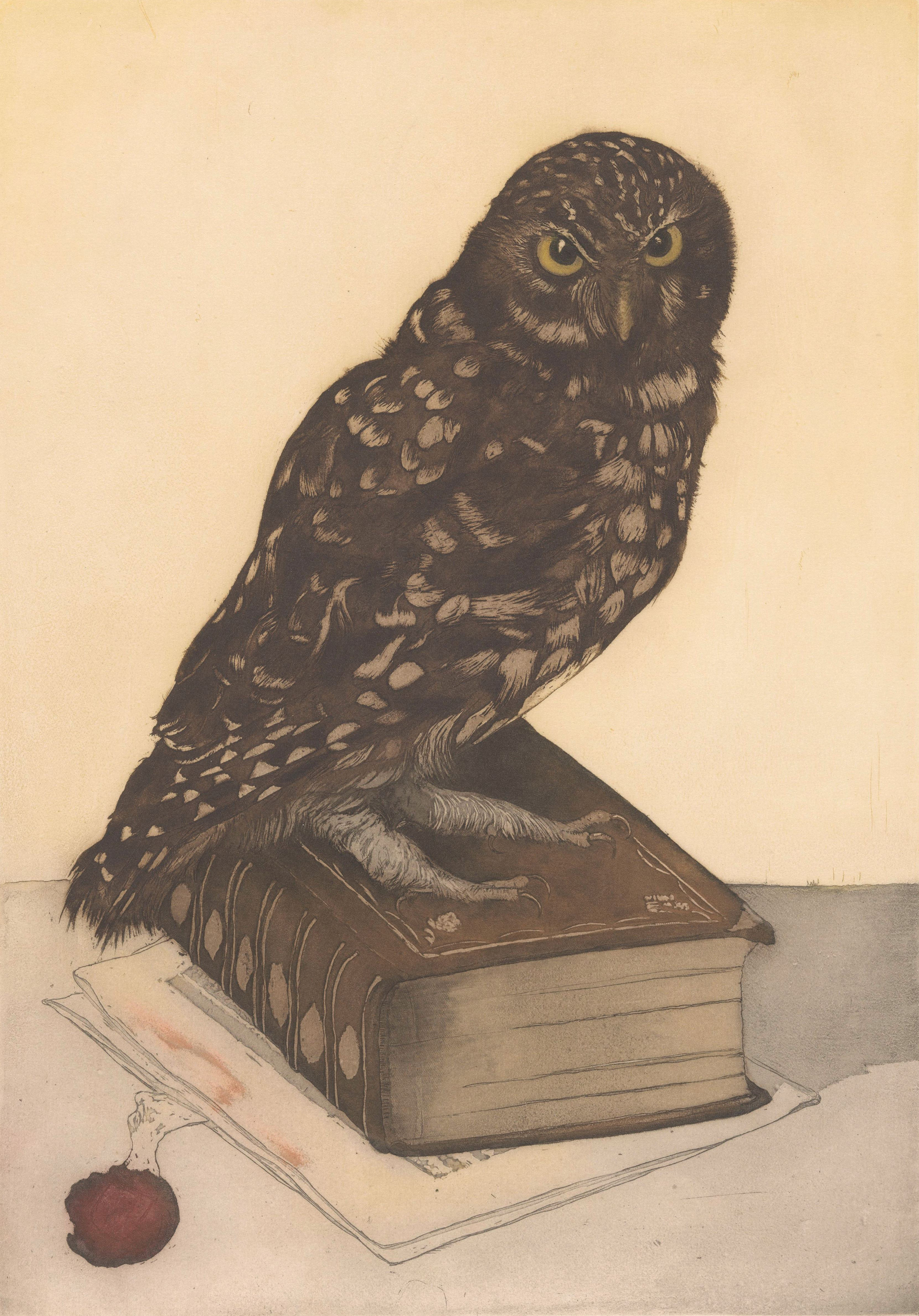 Owl sitting on a book, etching by Frans Everbag, c. 1900.