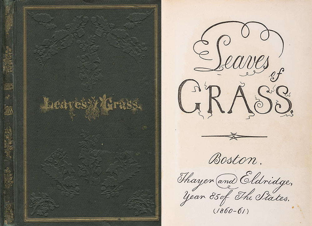 """The 1855 forest-green cloth cover of Leaves of Grass, with the title appearing in gold-stamped letters drawn by hand to give the effect of plants shooting up from long dangling roots, echoes the figurative uses of hair in Leaves. The title page for the 1860 edition of Leaves features curls extending above and below the word Leaves alongside squiggles Ed Folsom has characterized as a """"spermatoid design"""" permeating the third edition. American Antiquarian Society."""