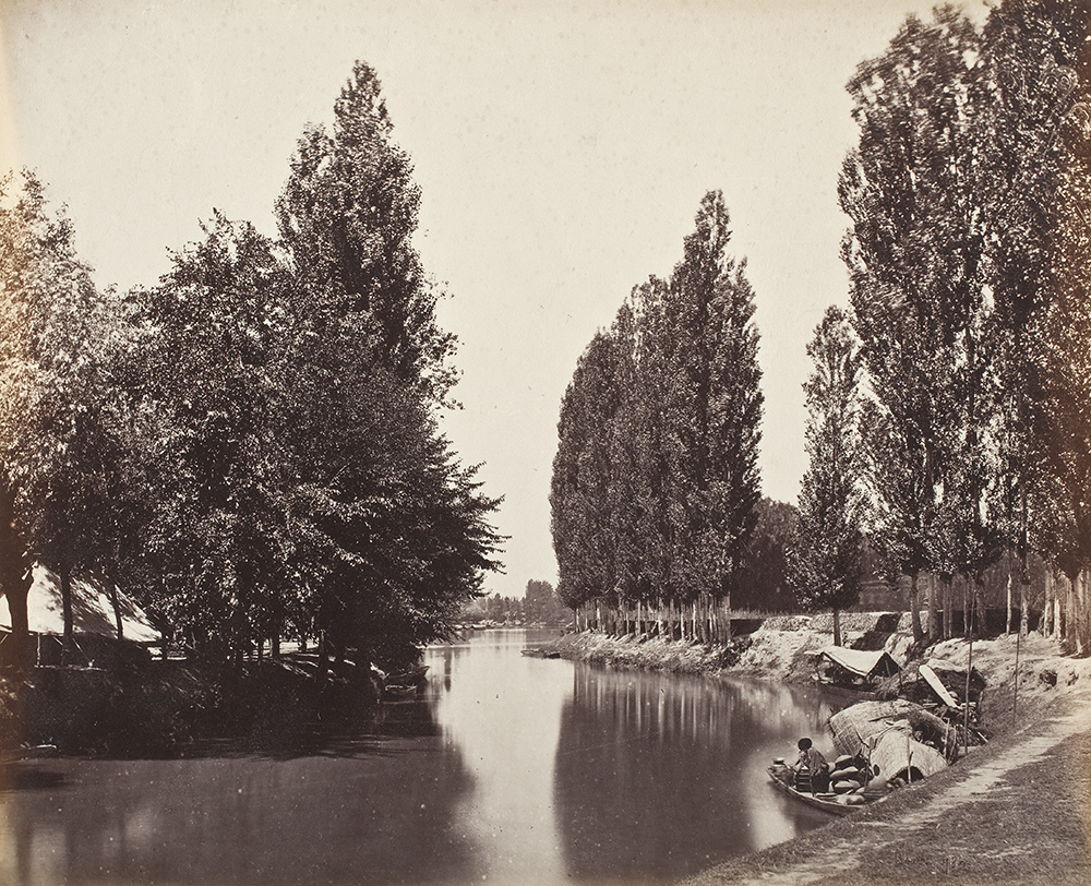River with Trees in India, by Samuel Bourne, c. 1868. Los Angeles County Museum of Art, The Marjorie and Leonard Vernon Collection, gift of the Annenberg Foundation, acquired from Carol Vernon and Robert Turbin.