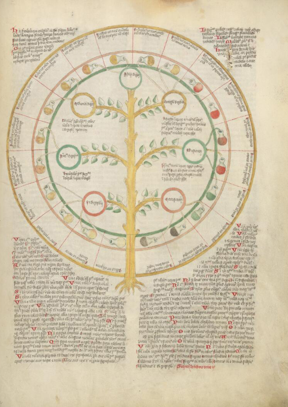 A wheel of urine spouting from a tree, from the Wellcome Apocalypse, c. 1420. Wellcome Library.