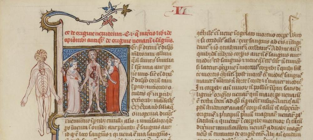 Illustration from De Animalibus, by Albertus Magnus, c. 1300. Bibliothèque nationale de France.