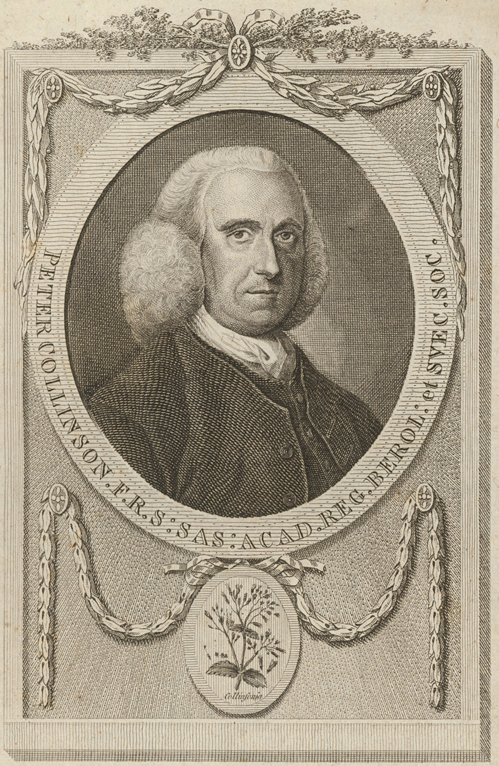 Peter Collinson, by T. Trotter, eighteenth century.