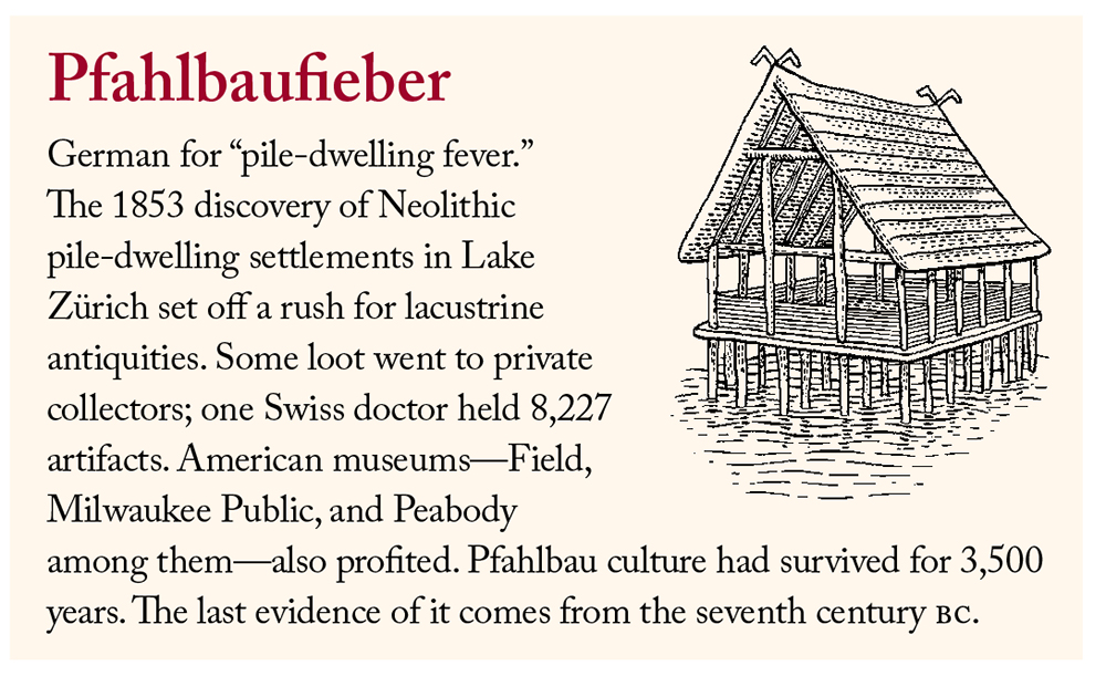 "Pfahlbaufieber: German for ""pile-dwelling fever."" The 1853 discovery of Neolithic pile-dwelling settlements in Lake Zürich set off a rush for lacustrine antiquities. Some loot went to private collectors; one Swiss doctor held 8,227 artifacts. American museums—Field, Milwaukee Public, and Peabody among them—also profited. Pfahlbau culture had survived for 3,500 years. The last evidence of it comes from the seventh century BC. Illustration by Christopher Brian King."