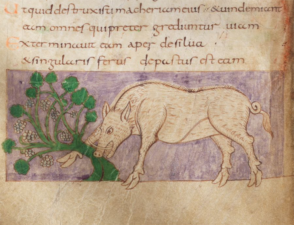 "Psalm 80:13: ""The boar from the woods has destroyed [the vine] and the singular beast has devoured it."" This illustrated psalter, known as the Stuttgart Psalter after its current home, was made at the monastery of Saint-Germain-des-Prés in Paris in 820–30."
