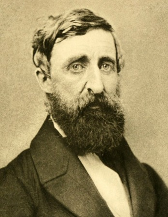henry david thoreau final essay