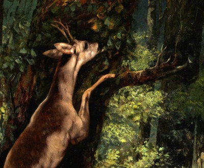 Deer in the Forest, by Gustave Courbet, 1868.