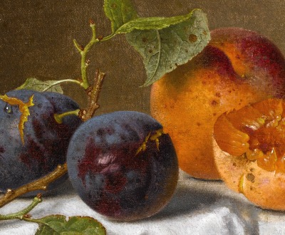 Plums and Apricots, by Emilie Preyer (1849-1930), date unknown.