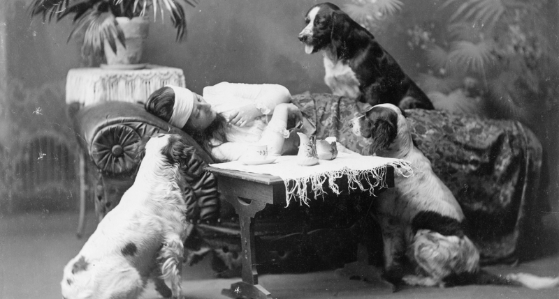 Woman, who appears to be ill, lying on couch, with three dogs looking on, c. 1903.
