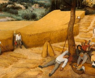The Harvesters, by Pieter Bruegel the Elder, 1565. The Metropolitian Museum of Art, Rogers Fund, 1919.