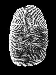 Image of thumbprint