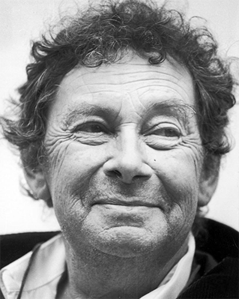 Swiss traveler and writer Nicolas Bouvier.