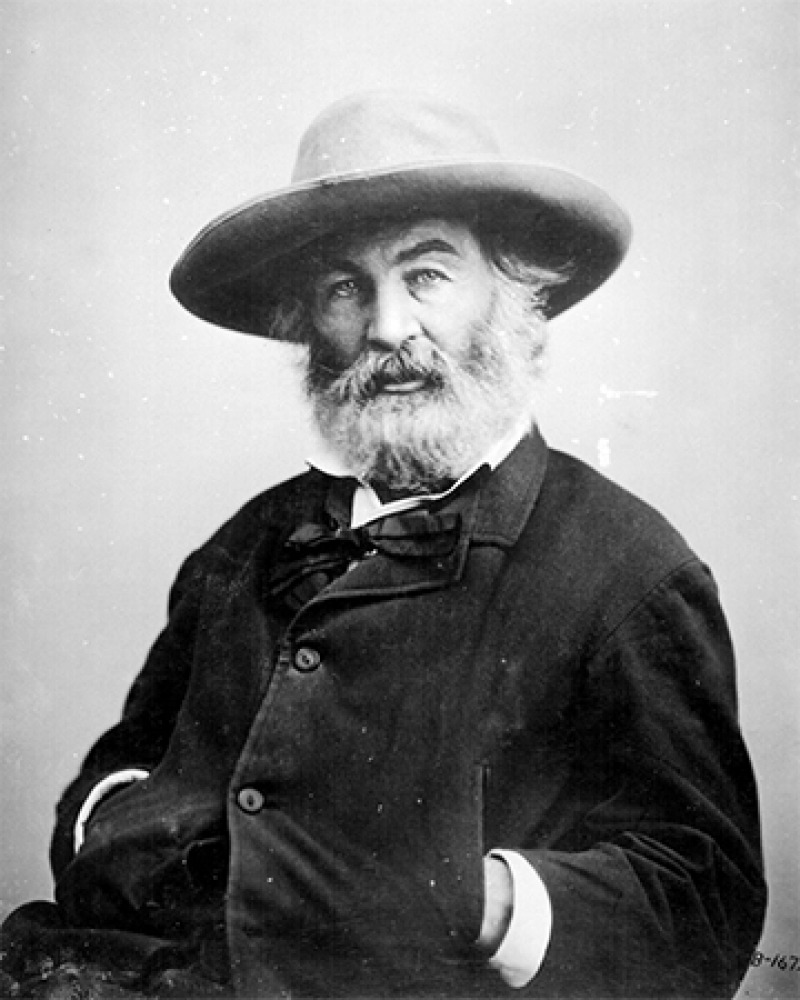 American poet, journalist, and essayist Walt Whitman.