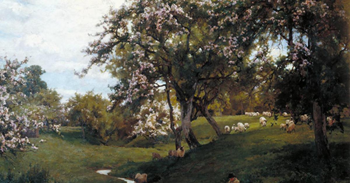 Isabella Tree